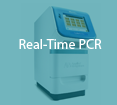tumbnail_real-time-pcr