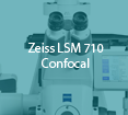 tumbnail_zeiss-confocal