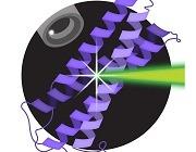 Eitan Lerner's laboratory