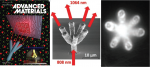 3D Printing of Micrometer‐Sized Transparent Ceramics with On‐Demand Optical‐Gain Properties