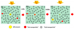 Generating Hot Carriers in Plasmonic Nanoparticles: When Quantization Does Matter?