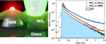 WS2 Monolayers Coupled to Hyperbolic Metamaterial Nanoantennas: Broad Implications for Light-Matter-Interaction Applications