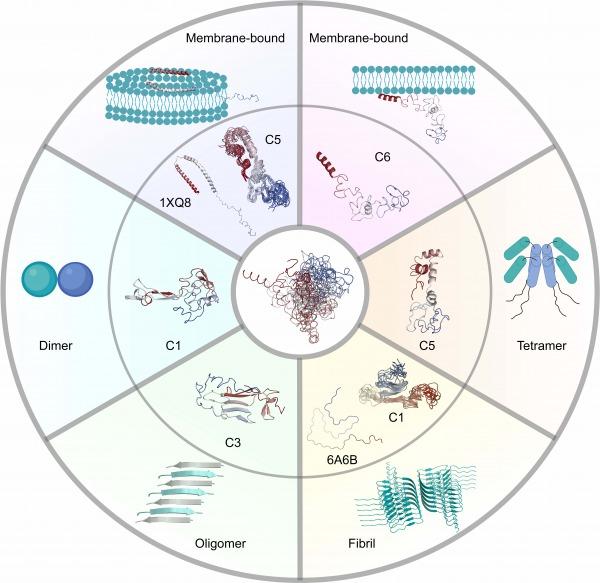 Precursor monomer structures