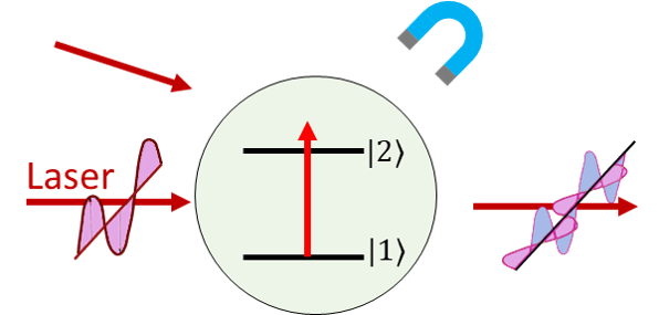 Control light with atoms