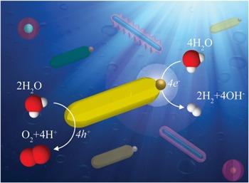 nanotech2020