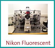 nikon-fluorescent