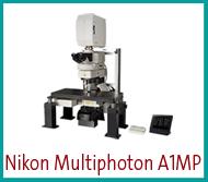 Multiphoton