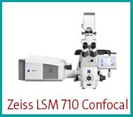 zeiss-lsm-710