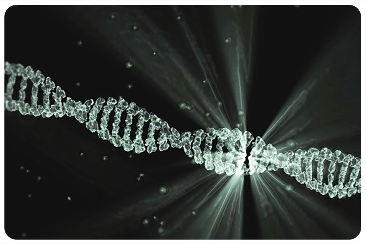 New DNA current research