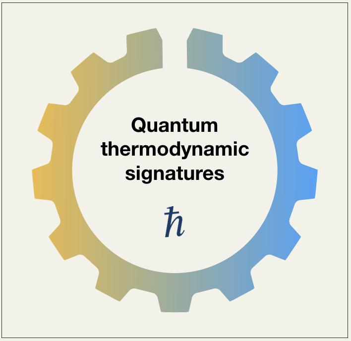 quantum thermo signature logo
