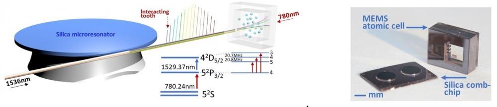 Direct Kerr-comb atomic spectroscopy