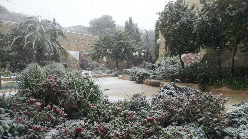 שלג בהר הצופים