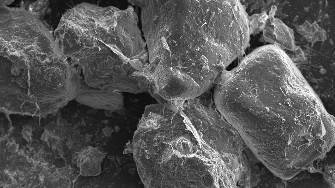 SEM soil mucilage
