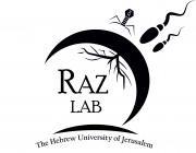 Tal Raz Lab